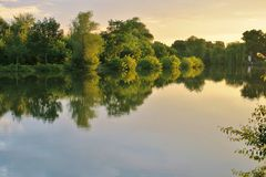 Beautiful lake with green trees whose branches fall into the water royalty free stock photos