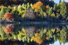 Beautiful Lake In Plitvice National Park Royalty Free Stock Photo