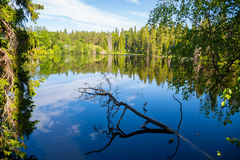 Beautiful lake on the island of Valaam in Russia Royalty Free Stock Photography