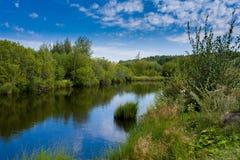 Beautiful lake landscape Stock Photos