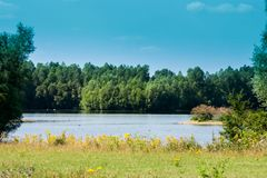 A beautiful lake and lots of greenery around. Forest in the background. A beautiful view. On a sunny day stock image