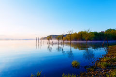 Beautiful lake with mountains in the background at sunrise. Trees in water and morning fog. Stock Photography