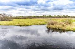 Beautiful lake of Myakka Valley, Florida Royalty Free Stock Images