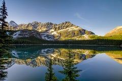 Beautiful Lake Ohara in Banff National Park Royalty Free Stock Image