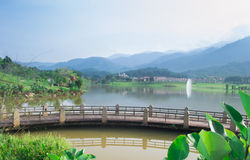 Beautiful lake Stock Photos