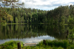 Beautiful lake with reflection of blue sky and evergreen forest. In the north of Russia Royalty Free Stock Photo