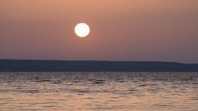 Beautiful lake or river during sunrise or sunset. Beautiful calm waterscape with lake or river during sunrise or sunset stock video