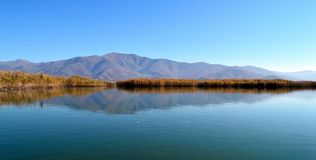 Beautiful lake scape. A beautiful lake scape with reflected mountains and reeds in the small Prespa lake in Greece early in winter stock images