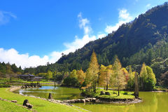 Beautiful lake scenery. With colorful trees and arbor in autumn Royalty Free Stock Photo