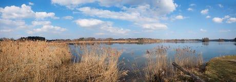 Beautiful lake seeham nature preserve for birds Stock Photos