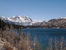 Beautiful lake, snow mountain and pine tree Royalty Free Stock Photos