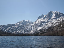 Beautiful lake, snow mountain and pine tree Stock Images