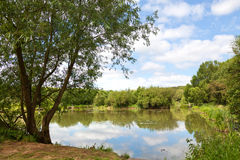 Beautiful lake in spring Royalty Free Stock Images