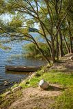 Beautiful lake in summer day Stock Images