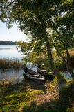 Beautiful lake in summer day Royalty Free Stock Photo
