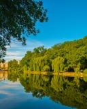 Beautiful lake at summer. Royalty Free Stock Photos