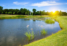 Beautiful lake at sunny day Stock Photo