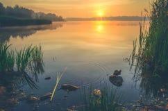 Beautiful lake at sunrise. Royalty Free Stock Images