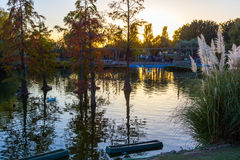 Beautiful lake with trees at sunset Stock Photo