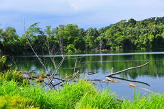 Beautiful lake on a tropical island royalty free stock photos