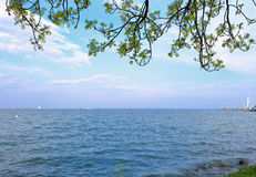 Beautiful lake under the blue calm sky with green tree branches. Above. Ecologic bright summer pacific scenic. Closeup Stock Photography