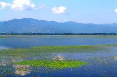 Beautiful lake view,Greece Stock Images