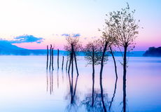 Beautiful lake view in mornig fog with trees and mystic mountains on the background in tender purple-blue tones, with Stock Photo