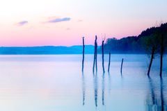 Beautiful lake view in mornig fog with trees and mystic mountains on the background in tender purple-blue tones, with Stock Image