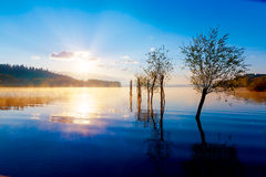 Beautiful lake view in morning fog with mystic mountains and trees as leftovers of a mole in gold, purple - blue tones. Royalty Free Stock Photography