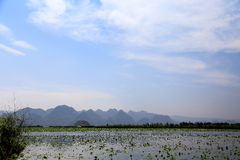 The beautiful lakeview in puzhehei county,yunnan, china Royalty Free Stock Photos