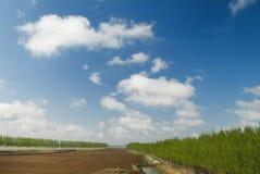 Beautiful Land Stock Images
