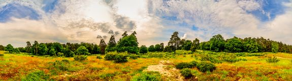 Beautiful landsape in Germany. Panorama of a landscape in spring with forest, meadows and moody sky Stock Photo