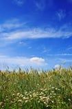 Beautiful landscape Royalty Free Stock Photography