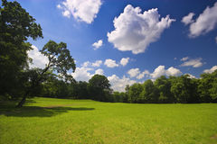 Beautiful landscape. Park for a wonderful holiday and relaxation Royalty Free Stock Photography