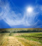 Beautiful landscape. Green and yellow field, blue sky, bright sun Stock Photography