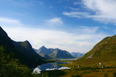 Beautiful landscape. Lofoten's landscape in summer by a sunny day with mountains reflected in a lake Royalty Free Stock Image