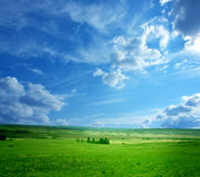 Beautiful landscape Royalty Free Stock Photography