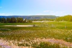 Free Beautiful Landscape Royalty Free Stock Photography - 33115937
