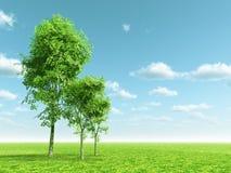 Beautiful landscape Stock Photos