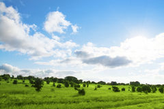 Beautiful landscape royalty free stock photos