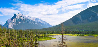 Beautiful landscape in Alberta, Canada Royalty Free Stock Image