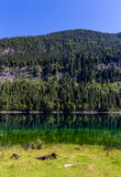 Beautiful landscape of alpine lake with crystal clear green water and mountains in background, Gosausee, Austria Stock Image