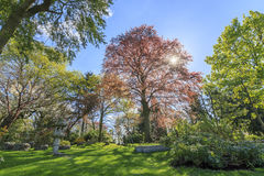 Beautiful landscape around Holland Park. London, United Kingdom Royalty Free Stock Photo