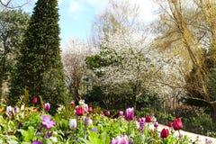 Beautiful landscape around Hyde Park Royalty Free Stock Photo