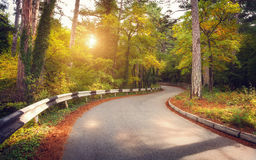Beautiful landscape with asphalt road,green forest and road sign at colorful sunrise in summer. Crimean mountains. Royalty Free Stock Photos