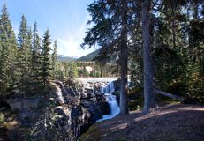 Forest trees and flowing water and mountains. Beautiful landscape at Athabasca Falls in Jasper National Park, Canada royalty free stock photos