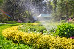 beautiful landscape with automatic sprinkler spraying watering the lawn in the home garden with a rainbow in water drops Royalty Free Stock Image