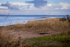 Beautiful landscape in autum baltic see green field blue sky Stock Photo