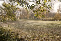 Beautiful landscape in autumn with a couple walking the dog at woodland waters, Grantham Uk royalty free stock photo