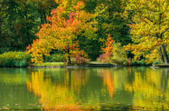 Beautiful landscape in autumn Royalty Free Stock Photo